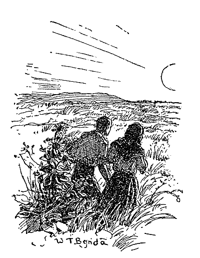 Image of 'Jim and Ántonia'