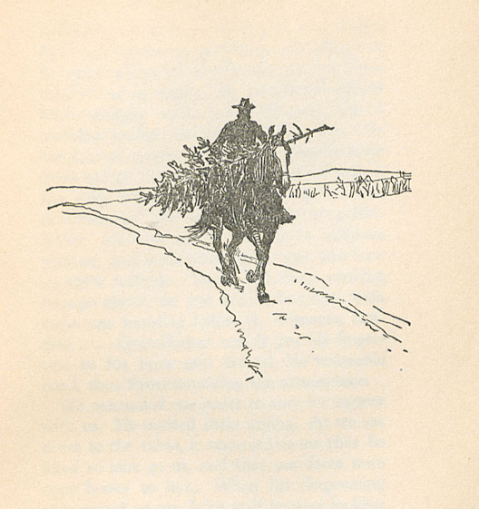 Image of 'Jake bringing home a tree'