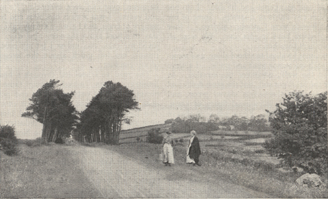 photograph of the road from Ballymena to Ballymoney in Ireland
