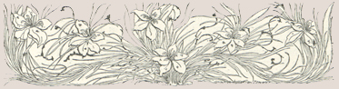 A drawing of grass and flowers