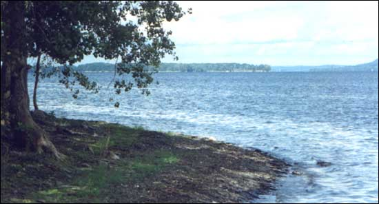 Image of Lake Champlain from the Champlain Islands. Photo by Sherrill Harbison.