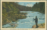 Image of front of postcard showing salmon fishing in New Brunswick, Canada